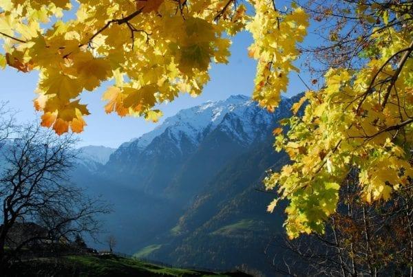 Farbenreiche Herbstwanderungen im Passeiertal